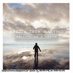 Empire Of The Sun - Walking On A Dream (Razz X Zack Martino Remix)