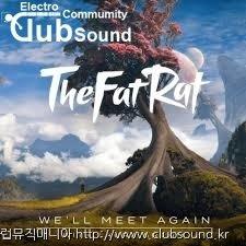(+10곡) TheFatRat - We'll Meet Again (feat. Laura Brehm)