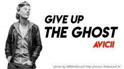 (2020년 신곡+)Avicii - Give Up The Ghost + 17곡