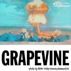 Tiesto - Grapevine (Tujamo Extended Remix)