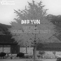 BEE YUN HOUSE TECH SET Part 1