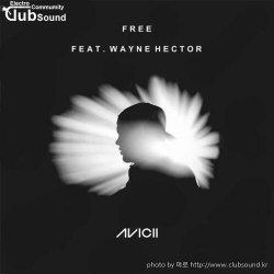 EDMミAvicii - Free (ft. Wayne Hector)+8