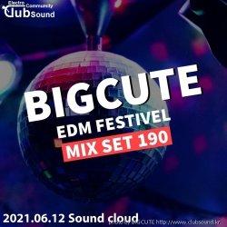 #7 DJ BIGCUTE EDM FESTIVEL MIX SET 190
